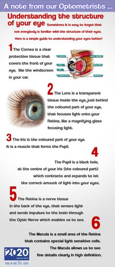 Understanding the structure of your eye! Jargons are explained in layman terms | Brought to you by 2020 Optical Store in London