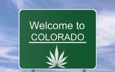 """Industria de la marihuana en Colorado declara un """"éxito"""" la legalización !!"""