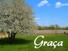 Leia a BÍBLIA / A PALAVRA DE DEUS é de graça! : A graça de Deus nos capacita a enfrentar o sofrime...