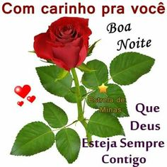 Discover recipes, home ideas, style inspiration and other ideas to try. Portuguese Quotes, Good Night, Rose, Flowers, Plants, Sandro, Grande, Portugal, Tumblr