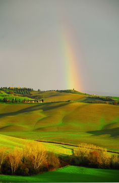 Rainbow over Tuscany......G is on his way home too. Thank goodness.Just to look at him will make the cooking easier...But yes, you are my true love.
