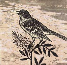 Mockingbird Morning