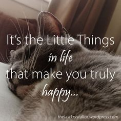 It's the Little Things in life - that make you truly happy - The Last Krystallos  What are the #LittleThings that make your day? Remember the things that make you #happy...  The purr of a cat, books, your bed, new blossoming flowers, friends, a compliment, birdsong? What is it for you?