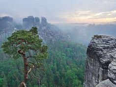 Das Elbsandsteingebirge in Sachsen zählt zu den schönsten Naturwundern Deutschlands. Welche Höhen erreicht es?