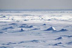 """Es difícil concebir que el desierto más grande del mundo sea la Antártida. Sin embargo, el """"continente helado"""" se trata del territorio más frío, seco y ventoso de todos los que configuran La Tierra. En la Antártida apenas llueve, la pluviosidad en la altiplanicie interior ronda los 50 mm."""