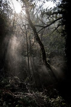 Ghostliness by Michele Bartocci on 500px