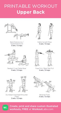 Workout plans to consider using pin fitness reference 6109413285 now. Workout plans to consider using pin fitness reference 6109413285 now. Upper Body Workout Gym, Workout Hiit, Back And Shoulder Workout, Back Day Workout, Gym Workout Plan For Women, Gym Workout For Beginners, Biceps Workout, Gym Workouts, Workout Plans