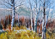 All - Aspen Thicket by Kris Parins