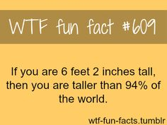 more-of-wtf-fun-facts-are-coming-here-funny-and-weird-facts-only-17-165ac5f4-sz500x375.png (500×375)