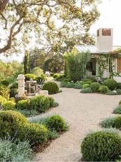 70 Magical Side Yard And Backyard Gravel Garden Design Ideas GARDEN- . 70 Magical Side Yard And Backyard Gravel Garden Design Ideas GARDEN- A gravel garden is a great option for a . Gravel Landscaping, Front Yard Landscaping, Florida Landscaping, Landscaping Design, Gravel Pathway, Drought Resistant Landscaping, Country Landscaping, Hard Landscaping Ideas, Desert Landscaping Backyard