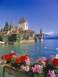 Lake Thun (Thunersee) and Oberhofen Castle Bernese Oberland. Our tips for 25 fun things to do in Switzerland: http://www.europealacarte.co.uk/blog/2012/02/13/what-to-do-in-switzerland/