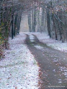 Frosty November day~