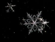 snowflakes falling - Google Search