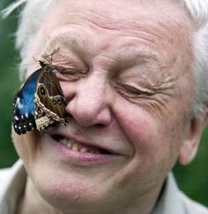 Sir David Attenborough. I could listen to this man talk about anything, all day, every day.