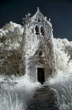 [ Winter: Snow: Church ]