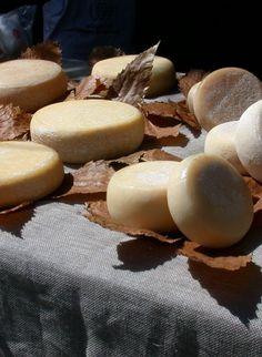 Formaggi toscani