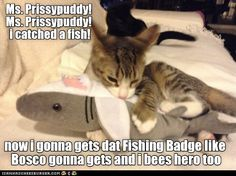 kamper Arnold is inspired by Bosco's efforts to try and gets hims own Fishing Badge http://cheezburger.com/9052138752