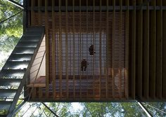 """""""Pilotis in a forest"""" is the name of this weekend house designed by Japanese studioGo Hasegawalocated three hours outside of Tokyo. Situated in the middle"""