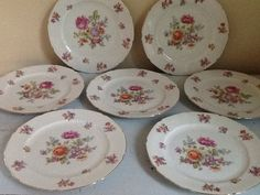 Hey, I found this really awesome Etsy listing at http://www.etsy.com/listing/157170931/fine-china-dinner-plates-f-b-fine-china