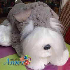 #perro #peluche snauzer #regalos Amer. 55246977 #CDMX