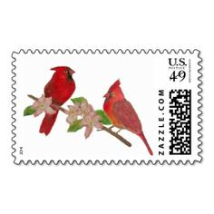 @@@Karri Best price          	Redbirds Stamps           	Redbirds Stamps This site is will advise you where to buyHow to          	Redbirds Stamps lowest price Fast Shipping and save your money Now!!...Cleck Hot Deals >>> http://www.zazzle.com/redbirds_stamps-172081635168184679?rf=238627982471231924&zbar=1&tc=terrest