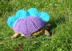 Stegosaurus tortoise cozy - made to order in any color on Etsy, $18.00
