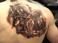 Tiger and wolf tattoo - 55 Awesome Tiger Tattoo Designs <3 !