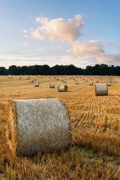 Beautiful countryside landscape image of hay bales in Summer fie - Beautiful landscape image of hay bales in Summer field during colorful sunset Beautiful Landscape Images, Nature Landscape, Summer Landscape, Landscape Photos, Landscape Paintings, Farm Photography, Landscape Photography, Summer Photography, Photos Tumblr