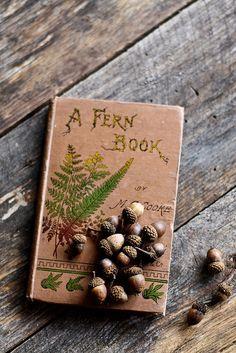 I love ferns and I love books. Old Books, Antique Books, Vintage Books, Woodlands Cottage, Forest Cottage, Nature Journal, I Love Books, Acorn, Book Worms