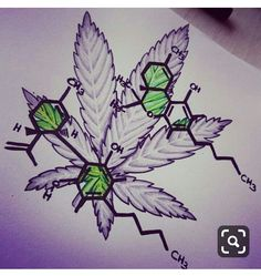 Half colored geometrical mandala flower tattoo design by Saphiriart Trippy Drawings, Graffiti Drawing, Tattoo Drawings, Body Art Tattoos, Art Drawings, Leaf Tattoos, Weed Tattoo, Marijuana Art, Tattoo Ideas