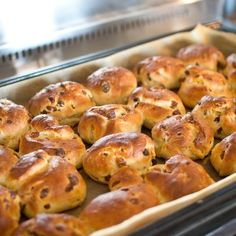 Krentenbollen uit de oven
