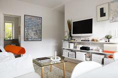 Living room: Tv on String shelf