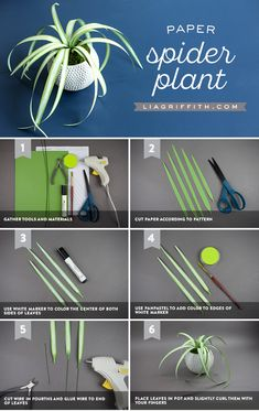Upgrade Your Flower Power With This Paper Spider Plant! Sometimes flowers have a bunch of nicknames. However, our favorite name for this amazing DIY planter papercraft is the spider plant. Pot Mason Diy, Mason Jar Crafts, Flower Power, Papier Diy, Fleurs Diy, Paper Plants, Mini Plants, Miniature Crafts, Paper Flowers Diy