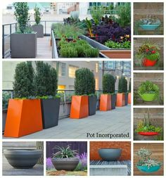 52 best Contemporary garden pots images on Pinterest | Modern ... Garden Planters Contemporary on contemporary garden signage, contemporary garden gates, contemporary garden ornaments, contemporary garden accessories, contemporary garden fencing, contemporary garden furniture, contemporary garden flags, contemporary garden pavers, contemporary garden statues, contemporary garden flowers, contemporary garden sheds, contemporary garden water features, contemporary garden design ideas, contemporary garden plants, contemporary garden art, contemporary garden fountains, contemporary garden stools, contemporary garden benches, contemporary garden sculptures, contemporary garden trellis,