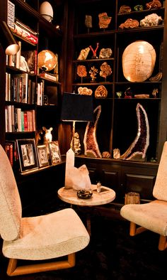 Corner of Samantha Boardman and Aby Rosen's library. Photographed by Claiborne Swanson Frank