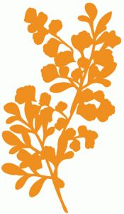 Silhouette Design Store - View Design #64322: autumn sprig