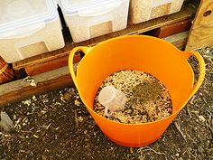 Make your own organic chicken feed