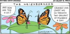 Image result for butterfly cartoons funny