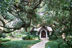 The chapel at Sea Island, Georgia. I have a similar pic - beautiful! Sea Island Georgia, Chapel Wedding, Wedding Pictures, Real Weddings, Mary, Cottage, Cabin, Vacation, Mansions