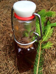 Domácí voňavý smrkovo-borovicový med na nervy i postavičku 'ham-ham' | . . . 365 věcí, které si můžete udělat doma sami
