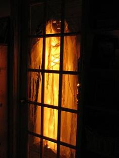 DIY Ghost in the window- for the bedroom window?