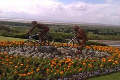 Floral artwork in Leigh on Sea for the Olympics 2012, the mountain bike event was held at nearby Hadleigh Castle