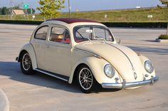 showroom model 59 bug