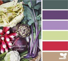 Art seeds color palettes i-see-in-colors
