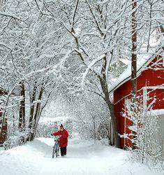 """""""Biking in a winter wonderland..."""""""