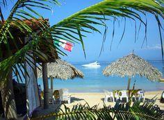 Surfing Redondo Hermosa Beach Wedding Pinterest Surfing