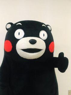 くまモン kumamon Mystic Messenger, Kermit, Reaction Pictures, True Love, Best Friends, Cartoons, Japan, Bear, Journal