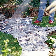 This works. Place newspaper (non-glossy) under a mulch in flower beds, even when starting a new vegetable garden bed. Deters weeds or grass and breaks down over time into the soil. Lawn And Garden, Garden Beds, Garden Art, Garden Junk, Garden Whimsy, Diy Garden, Upcycled Garden, Garden Shade, Rockery Garden