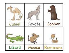 Preschool Printables: Desert Animals