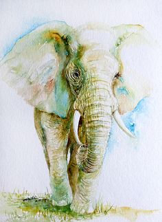 African Elephant in soft watercolors